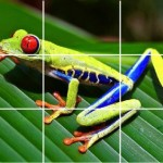 Teach Your Child About The Rule Of Thirds